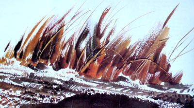 Técnica del pincel seco en Acuarela