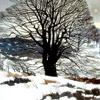 Pintar el invierno