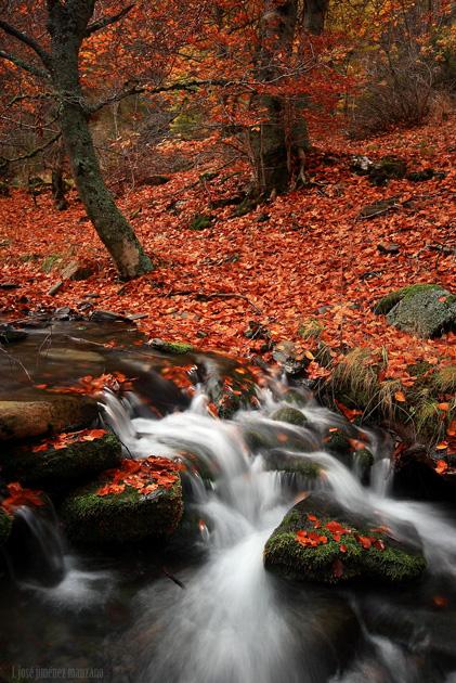 Rio y otoño