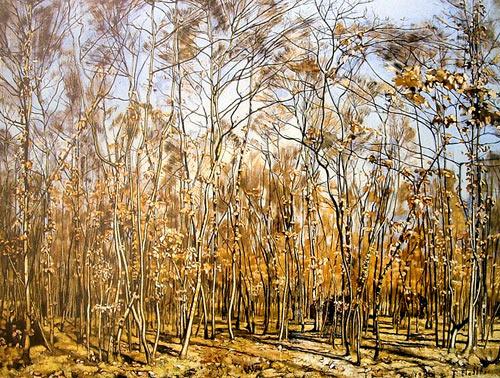 Pintura de Hodler - Bosque de árboles