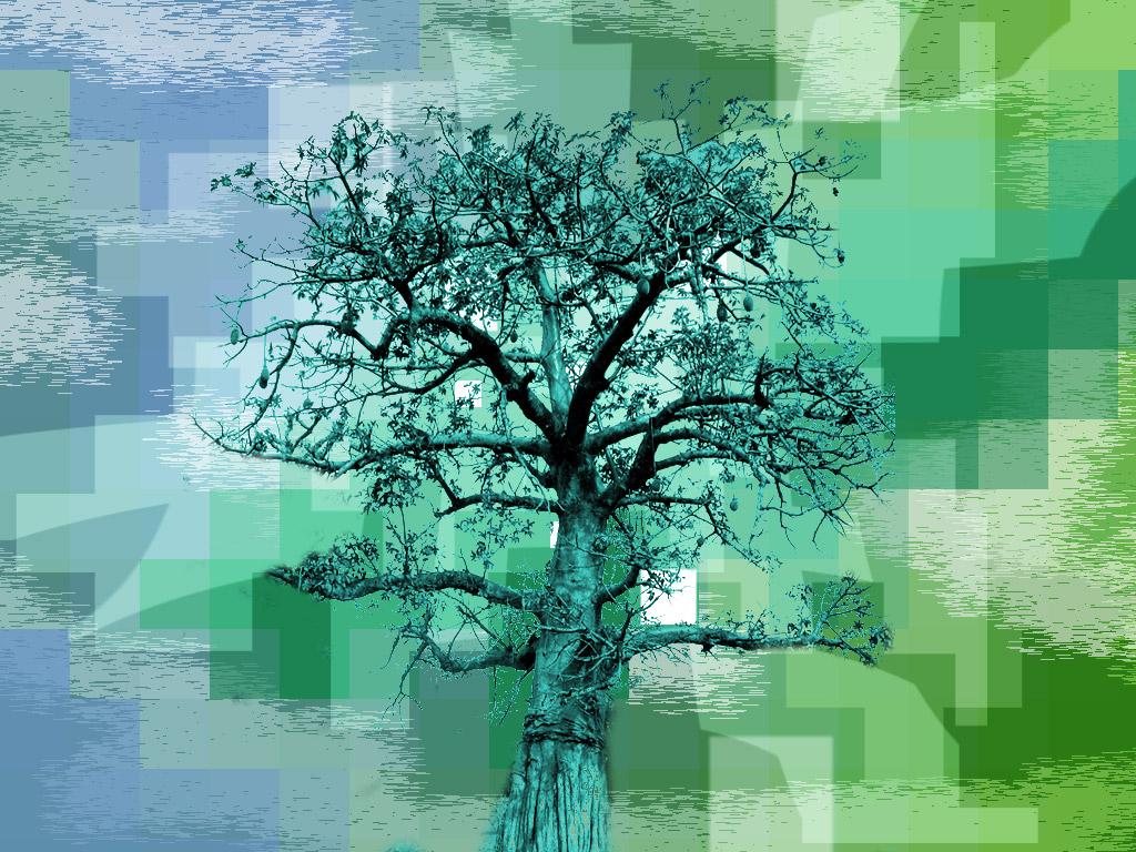 Fotografía abstracta El baobab y el agua
