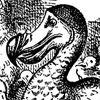 Los pájaros Dodo