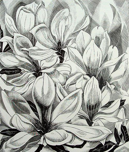 Magnolia de Mónica Poole