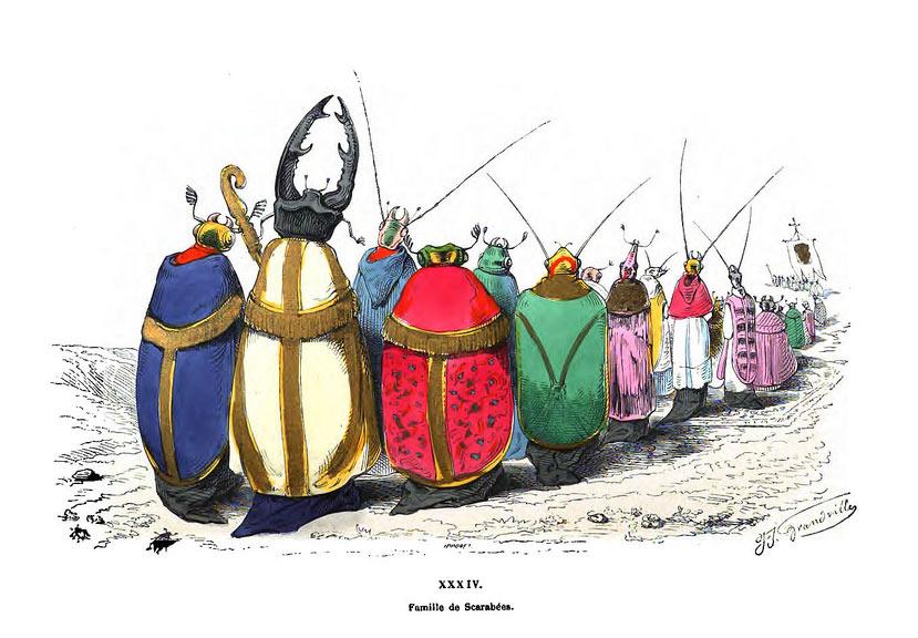 Familia de escarabajos, de Grandville