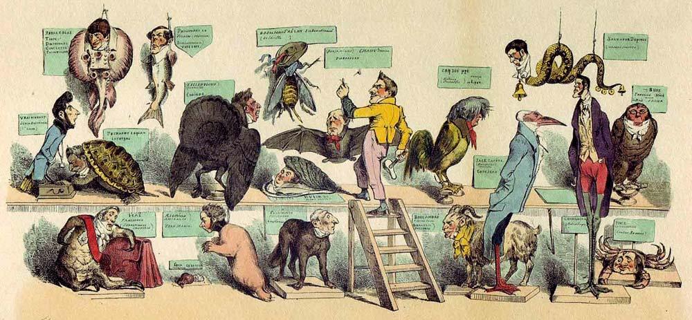 Historia natural, dibujo de Grandville