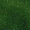 Los verdes más preciosos