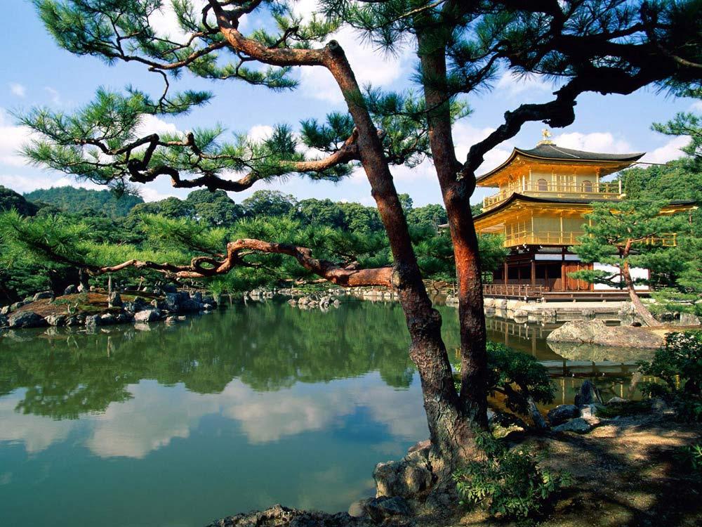 Árbol japonés con lago y casitas