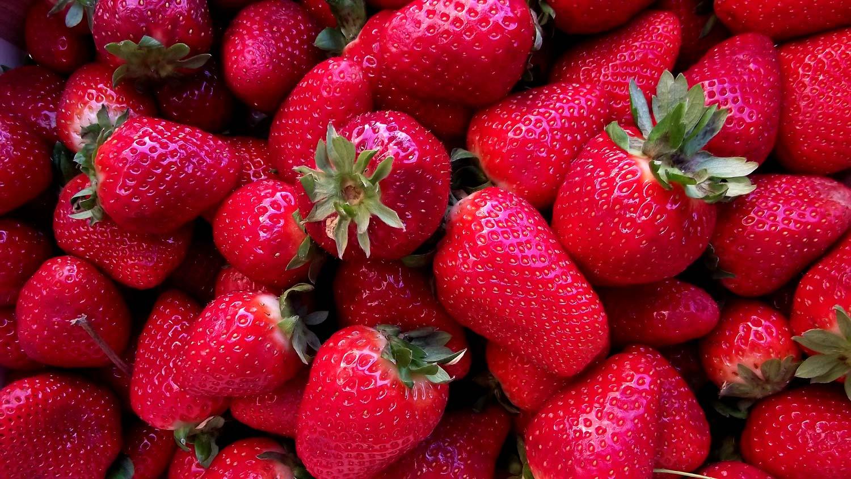 Fotografias gratis - Fresas rojas