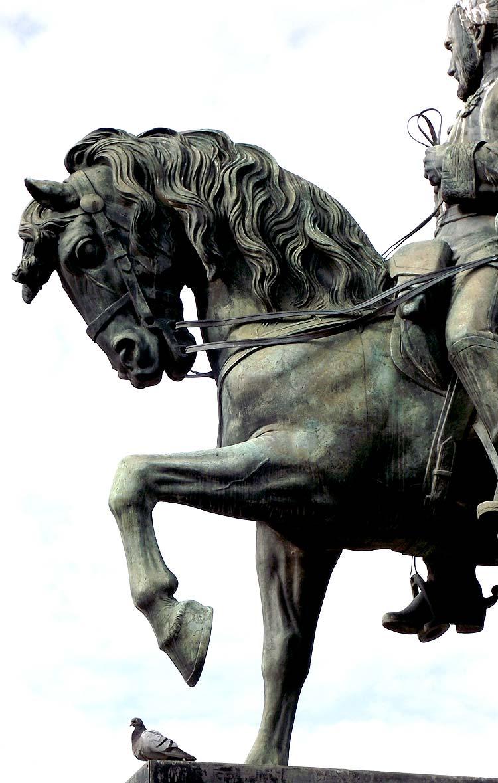 Fotos gratis - escultura cabeza de un caballo