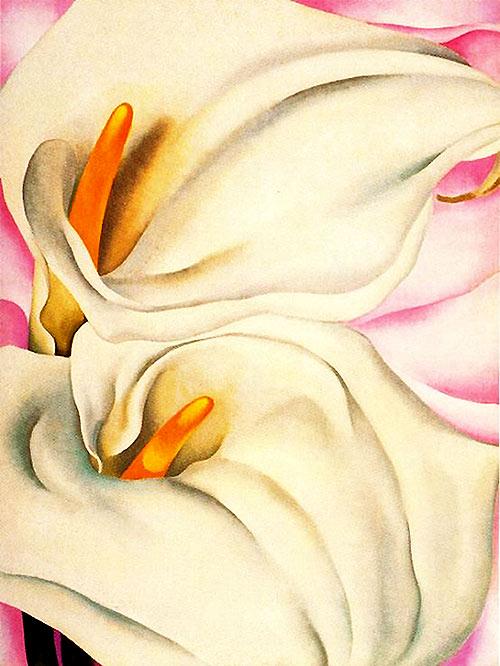 Flores de Georgia O Keeffe