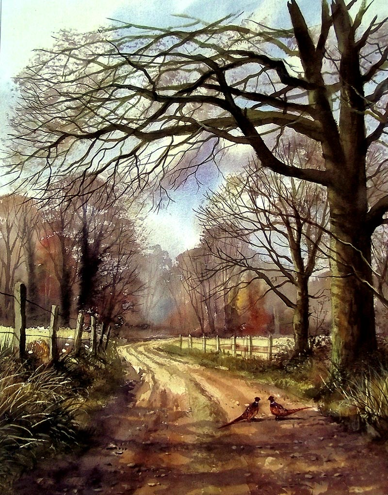 Landscapes by Terry Harrison