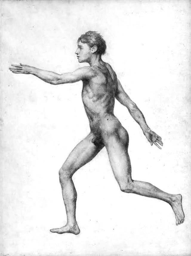 Cuerpo humano de George Stubbs