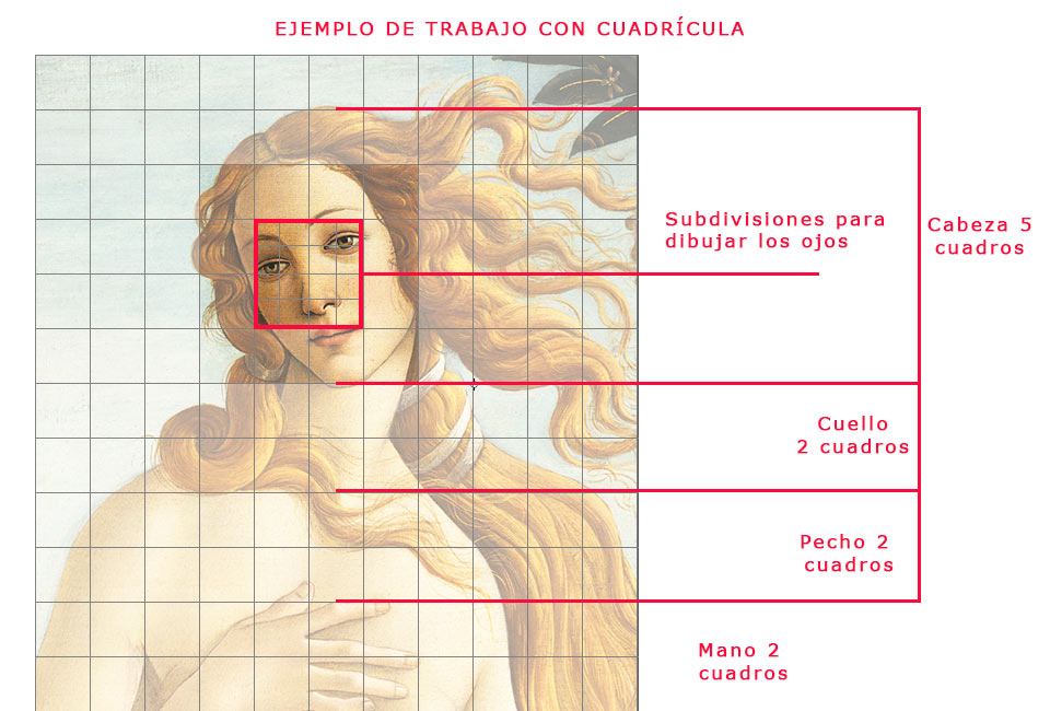 To draw the Botticelli's Birth of  Venus with a grid
