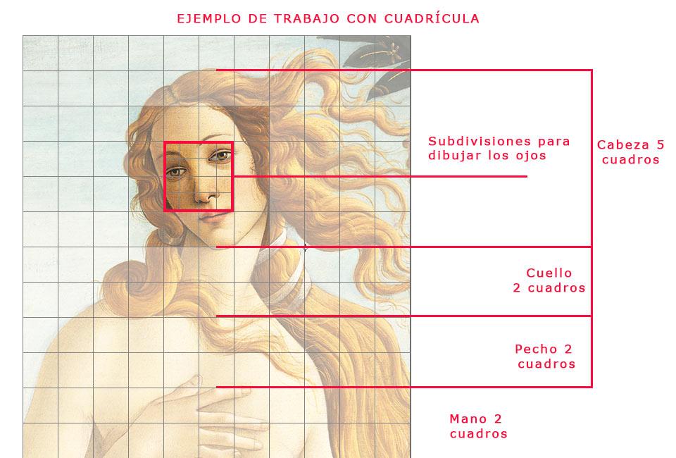 Dibujar la  Venus de Botticelli con una cuadrícula