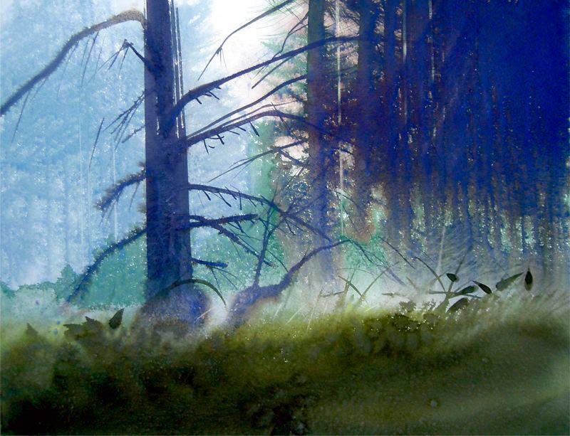 Bosque el camino de los Douglas, de Jean Claude Chaillou