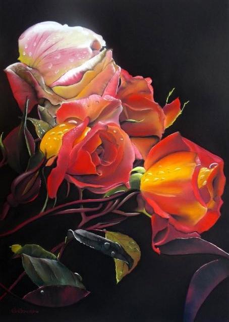 Expresión de rosas