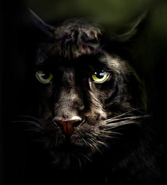 Pintura de Pantera negra