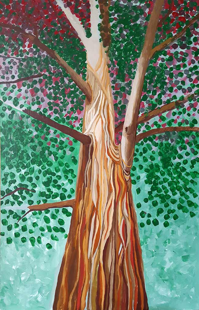 árbol lianas fondo