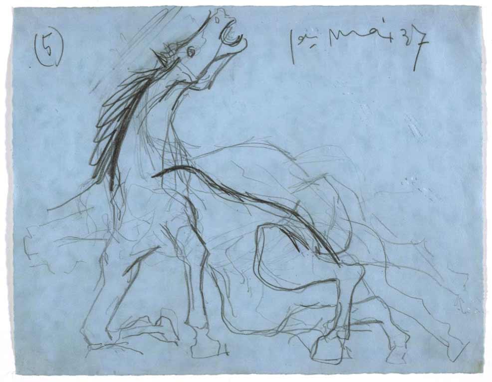 estudio caballo moribundo
